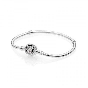 Pandora Poetic Blooms Mixed Enamels & Clear CZ