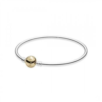 Pandora Silver Bangle Charm Bracelet With 14K Gold Clasp